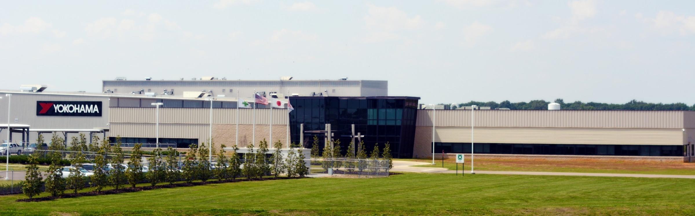 YTMM plant